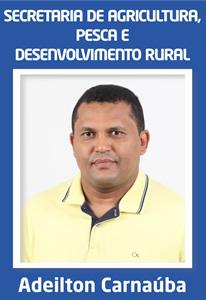 Adeilton Santos Viana